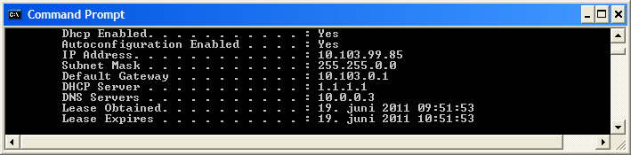Obtaining DNS information using IPCONFIG /ALL command.